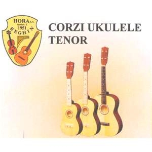 Juego cuerdas ukelele tenor (steel)