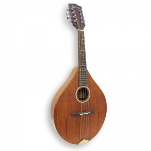 Ashbury AM-130 Mandolin