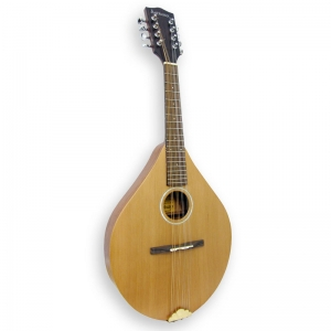Ashbury AM-140 Mandolin